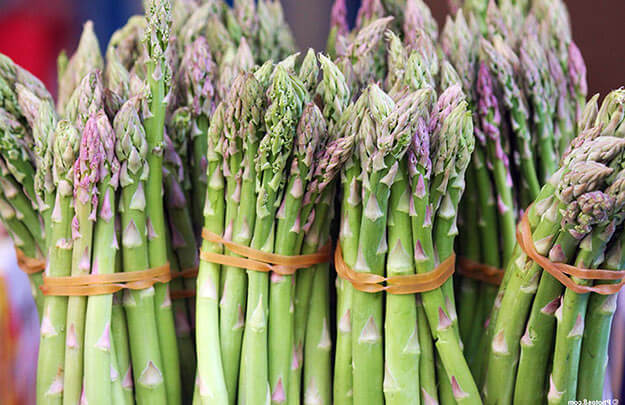 Спаржа: выращивание из семян и посев в грунт