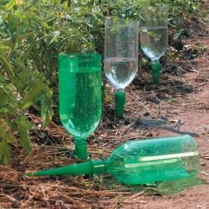 Создаем комфорт для растений с помощью бутылок из пластика