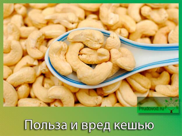 ухом является сырой нежареный арахис польза вред нашла женские духи