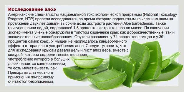 Использование алоэ вера в домашних условиях рецепты